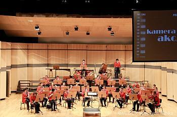 filharmonia mini 2013